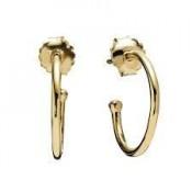 Pandora Brincos Compose 14 ct Amarelo Dourado Hoops