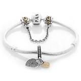 Pandora Douradoen Amor Locks Prata e completa Dourado