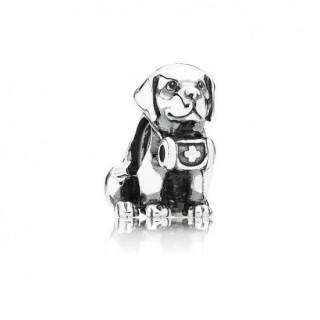 Pandora cão de St Bernard Charms Contas
